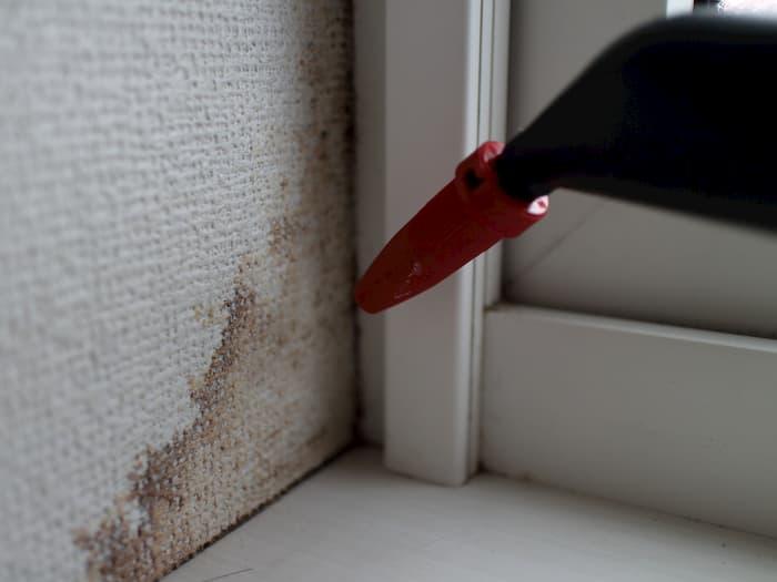 出窓の壁紙の黒カビを退治